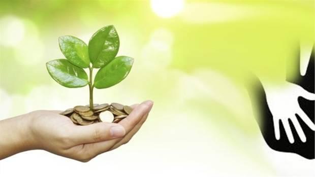 همه موسسات خیریه باید زیر نظر سازمان بهزیستی باشند