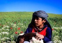 خدمات خیرخواهانه کاروان مهر و مهربانی و نشاندن نور امید در دل محرومان در جیرفت