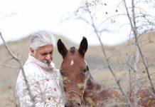 پزشک خراسان شمالی ۲۵ اسب را برای کمک به سیل زدگان به مزایده گذاشت